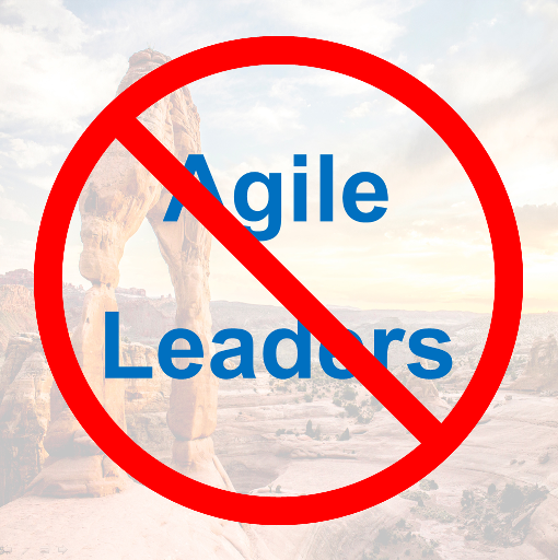 Agile: No Place for Leaders?