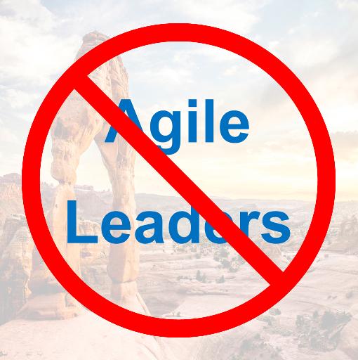 Agile: No Place forLeaders?